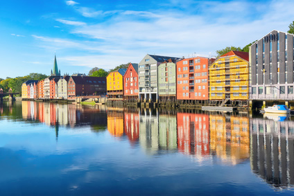 ESIS Summer School 2014 (Trondheim, Norway, 2014)